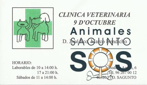 18-clinica-veterinaria-9-doctubre