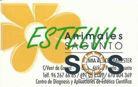 19-estelvi-centro-de-osteopatia-1