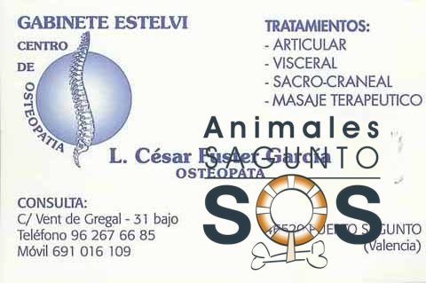 19-estelvi-centro-de-osteopatia-2