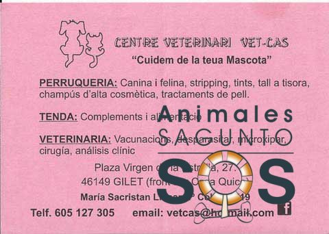 32-centre-veterinari-vet-cas