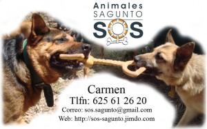 Calendario SOS Sagunto
