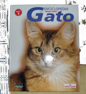 Enciclopedia del gato Protectora SOS Sagunto 4
